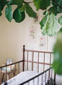 green-nursery