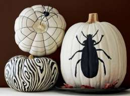 monochrome pumpkins